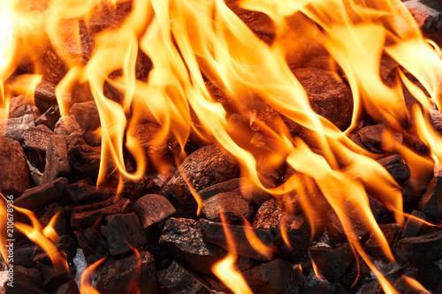 Leinwanddruck Bild Orange wild fire burning on black coal and ash, prepared for barbecue grill