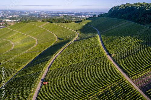Aluminium Wijngaard Luftaufnahme über Weinberge im Remstal in Deutschland