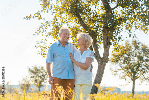 Leinwandbild Motiv Romantic senior couple holding hands while walking together on a field in the countryside in summer