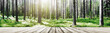 Wild forest panorama - 210744549