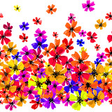 Vector seamless border with hand drawing flowers, multicolor bright artistic botanical illustration, isolated floral elements, hand drawn repeatable illustration. - 210758522
