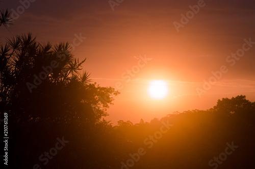 Aluminium Oranje eclat Foto
