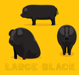 Pig Large Black Cartoon Vector Illustration - 210802747