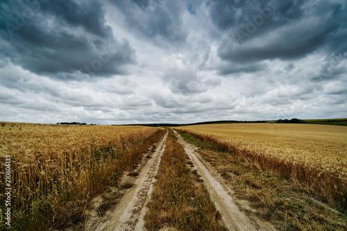Fototapeta Landwirtschaft, Feld mit Wolken