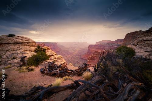Aluminium Cappuccino Arches Canyon