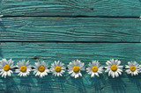 ornament from white chamomile flowers, against a background of antique turquoise boards, top view