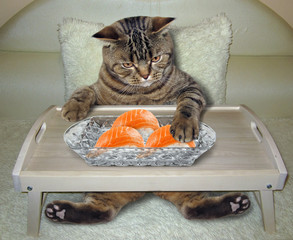 The hungry cat eats sushi on the bed.