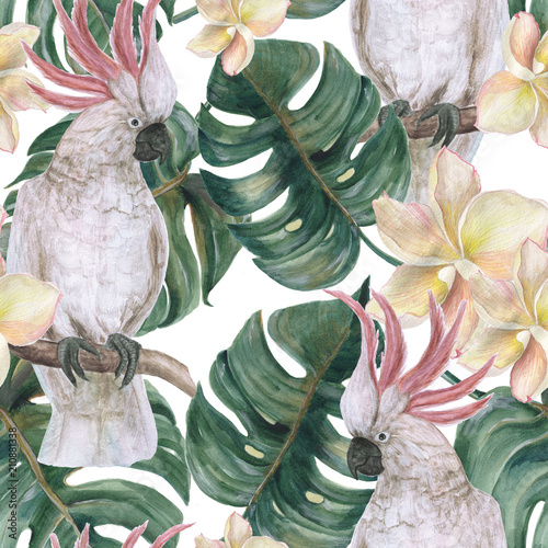 Watercolor painting seamless pattern with tropical deliciosa leaves, plumeria flowers and cockatoo - 210881338