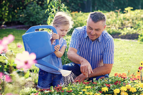 Watering flowers in the garden - 210885360