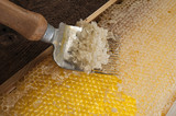 uncapping fork for uncaping honey comb for honey harvest - 210897311
