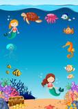 Amazing Underwater Marine Life - 210931995