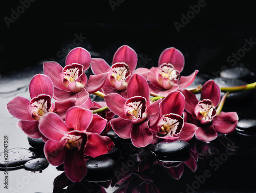 Aluminium Spa Still life with branch red orchid on black stones
