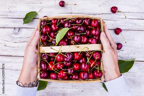 Fotobehang Kersen Freshly picked ripe sweet cherry in a basket.
