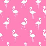 Flamingo seamless pattern - 210985580