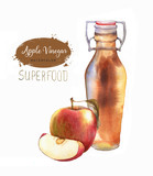 Hand-drawn watercolor illustration of apple cider vinegar isolated on the white background. Red apple and bottle of vinegar - 210988167