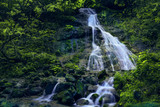 waterfalls at the sources of the Lambro river