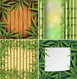 A Set of Bamboo Background