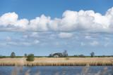 Deutschland, Niedersachsen, Ostfriesland, Krummhörn, Naturschutzgebiet Leyhörn - 211100503