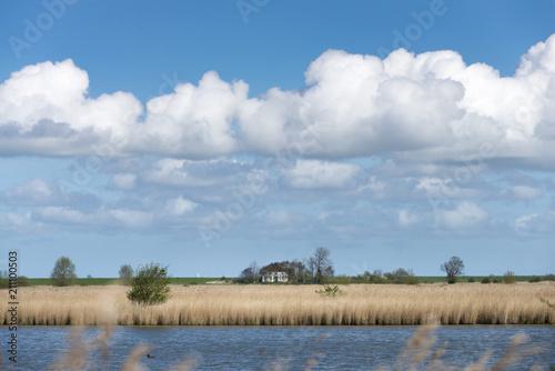 Fotobehang Noordzee Deutschland, Niedersachsen, Ostfriesland, Krummhörn, Naturschutzgebiet Leyhörn