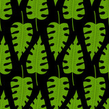 Seamless pattern with tropical leaves doodle style. Vector