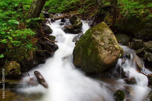 Aluminium Bergrivier River in the woods