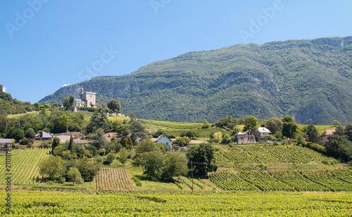 Aluminium Wijngaard Vignobles de Savoie à Chignin