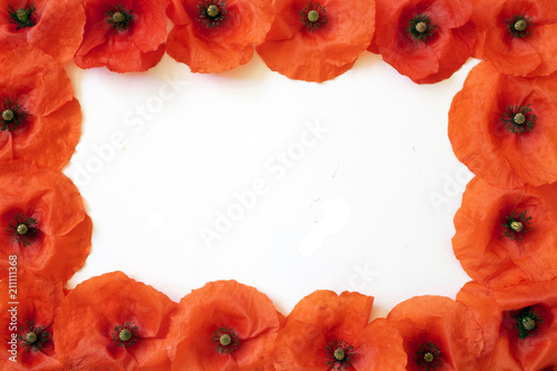 Borders and Frames Made out of Poppies on White Background - 211111368