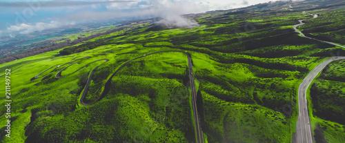 Aluminium Rijstvelden Hawaii Rural road aerial top view