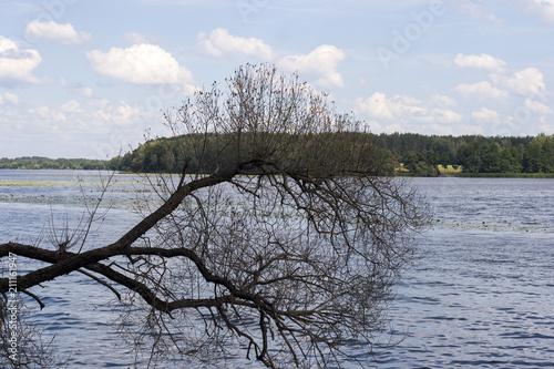 Aluminium Lente landscape on the river