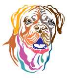 Colorful decorative portrait of Dog Dogue de Bordeaux vector illustration