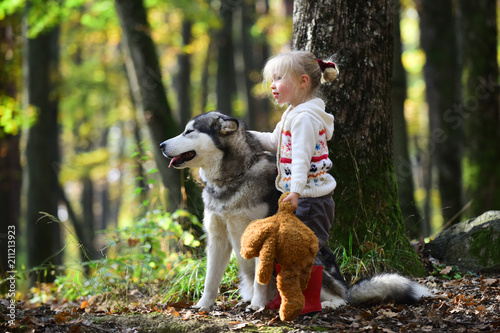 Beautiful girl walking with big dog. Best friend and companion. Cheerful young girl petting dog while standing in forest outdoor