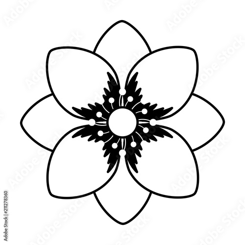 Wall mural beautiful flower decorative icon vector illustration design