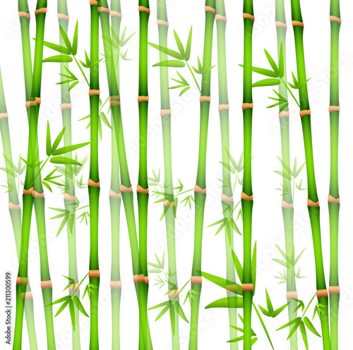 Vector Illustration of Background with realistic Bamboo