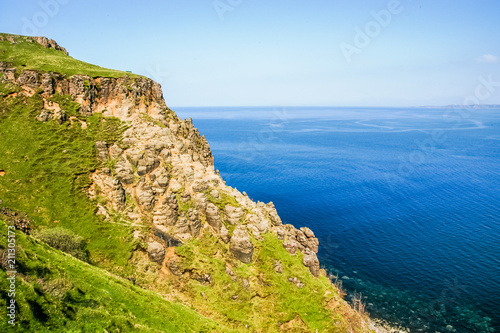 Rocky seashore covered with green grass