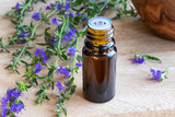 A bottle of hyssop essential oil with fresh blooming hyssop - 211321339