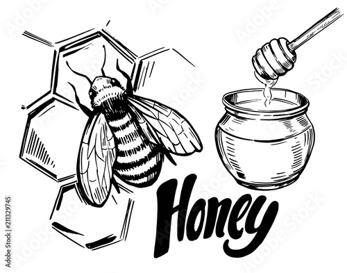 Sketch of honey elements. Hand  drawn illustration converted to vector