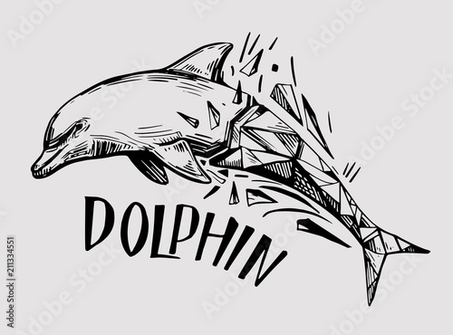 Fototapeta Sketch of dolphin. Hand drawn illustration converted to vector