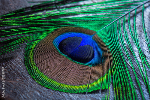 Fotobehang Pauw colorful peacock feather