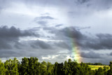 bright rainbow in the sky with dark clouds on the background of trees  © Stanislav