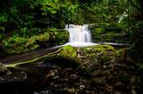 Lower Maclean Falls