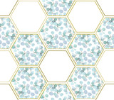 Abstract background with eucalyptus branches and hexagon figures - 211368939