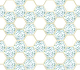 Abstract background with eucalyptus branches and hexagon figures - 211368952