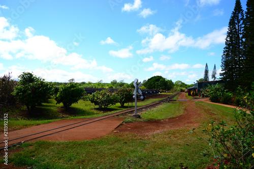 Aluminium Spoorlijn 農園と線路