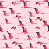 Watercolor flamingo pattern - 211401712
