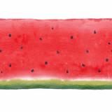 Watercolor watermelon seamless vector pattern - 211401957