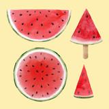 Watercolor watermelon vector set - 211401972
