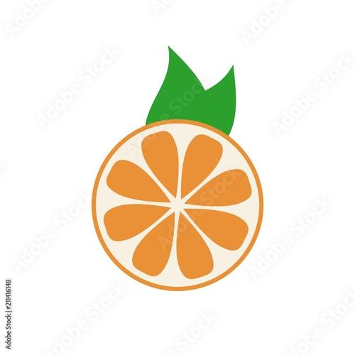 Organic logo. Orange logo. Orange icon - 211416148