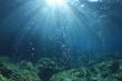 Leinwanddruck Bild - Underwater ocean background with air bubbles in water