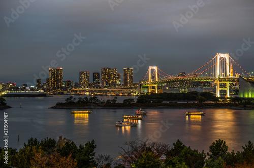 Tokyo skyline - 211504987