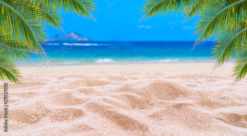 Summer vacation white sand beach with space for text coconut leaves rear frame sea view energetic floor